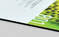 Dibond Panel Printing